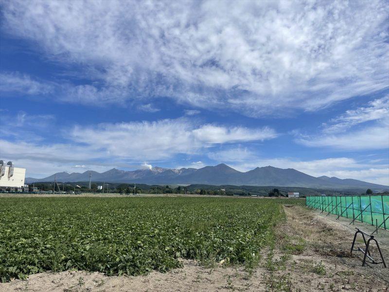 上富良野町東1線北22号土地 写真9
